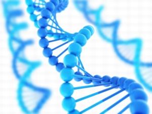 Признание отцовства по ДНК