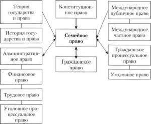 Взаимодействие семейного права с другими отраслями права